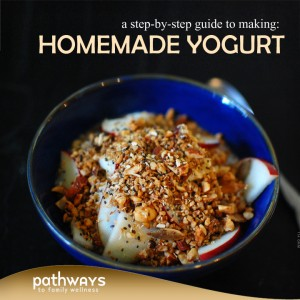 Homemade-Yogurt-Graphic